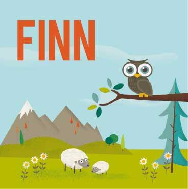 Geboortekaart-Finn-voorkant-kaartje-van-koen