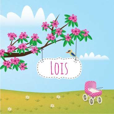 Geboortekaart-Lois-voorkant-kaartje-van-koen