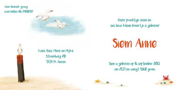 kaartje-siem-geschilderd-kaartje-van-koen-geboortekaartjes-op-maat-binnenkant